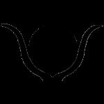 Symbol Hathor