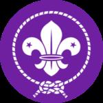 Lilijka - Symbolizuje podążanie harcerzy w dobrym kierunku