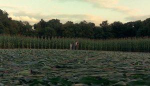 """Kadr z filmu """"Znaki"""" w którym pojawia się motyw kręgów w kukurydzy"""